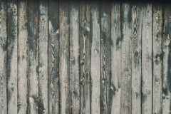 Old painted wooden fence background texture. For design Stock Image