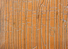 Old painted wooden surface Stock Image