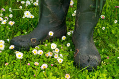 An old pair of rubber boots Stock Photography