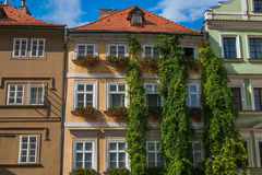 Old palace with ivy in the historic center of Prague city. Europe Royalty Free Stock Photos