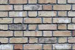 Old Pale Brick Wall. A weathered old brick wall with pale and pastel colors Royalty Free Stock Photos