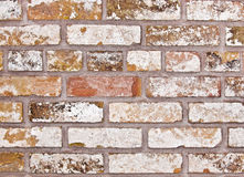 Old Pale Brick Wall. A weathered old brick wall with pale and pastel colors Stock Photos
