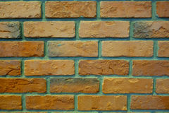 Old Pale Orange Green Brick Wall Texture. Vintage Background Stock Image