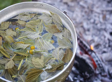Old pan on stove outdoors. In process of herbal tea preparation Royalty Free Stock Photography