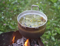 Old pan on stove outdoors. In process of herbal tea preparation Royalty Free Stock Photo