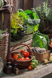 Old pantry with harvested vegetables and fruits Stock Images