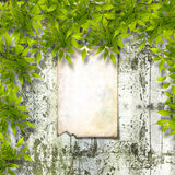 Old paper ad on ruined stone wall with bright foliage Stock Images