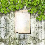 Old paper ad on ruined stone wall with bright  foliage Stock Photo