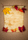 Old paper with autumn leaves Stock Image