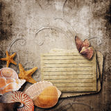 old paper background with beautiful sea shells Royalty Free Stock Images
