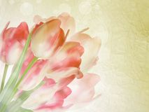 Old paper background with beautiful tulips. EPS 10 Stock Photography