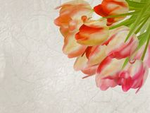 Old paper background with beautiful tulips. EPS 10 Stock Image