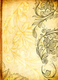 Old paper background with floral patterns. Stock Image