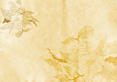 Old paper background with flowers. Royalty Free Stock Image