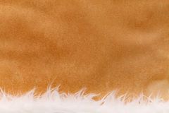 Old paper background with fluffy material Royalty Free Stock Image