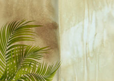 Old paper background with palm leaf Royalty Free Stock Photo