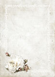 Roses vintage background  Royalty Free Stock Photography