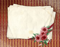 Old paper with chrysanthemum. Old paper with ribbons and chrysanthemum on the abstract background Stock Image