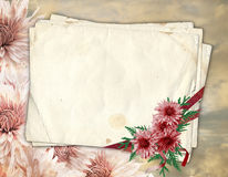 Old paper with chrysanthemum. Old paper with ribbons and chrysanthemum on the abstract background Royalty Free Stock Photography