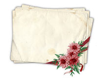 Old paper with chrysanthemum. Old paper with ribbons and chrysanthemum on the isolated white background Stock Photos