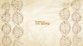 Old paper with dna. Old paper with dna pencil image on the left side. Vector illustration vector illustration