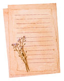 Old paper and the dried flowers Royalty Free Stock Photos