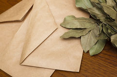 Old envelopes and bay leaf on a wooden background Royalty Free Stock Images