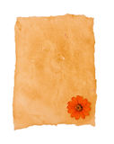 Old paper and flower Royalty Free Stock Image