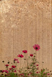 Old paper flower background frame Royalty Free Stock Photography