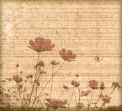 Old paper flower background frame Royalty Free Stock Photos