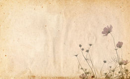 Old paper flower background frame Stock Photos