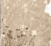 Old paper flower background frame Stock Images