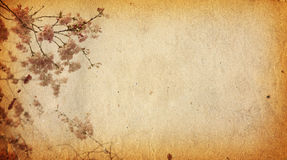 Old paper flower textures Royalty Free Stock Images
