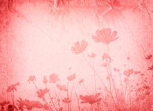 Old paper flower textures Stock Photography