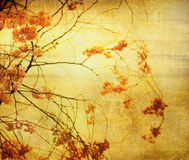 Old paper flower textures Royalty Free Stock Photo