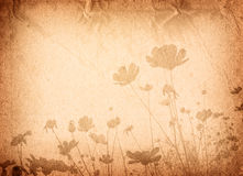 Old paper flower textures Stock Images