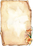 Old paper with flowers - watercolor. Old paper decorated with lilium,made with watercolor stock illustration