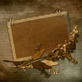 Old paper frame Stock Images