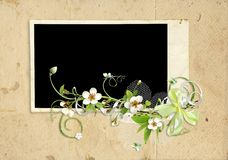 Old paper frame with apple tree flowers Stock Photos