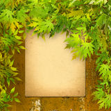 Old paper listing on rusty iron wall with bright foliage Stock Image