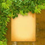 Old paper listing on rusty iron wall with bright  foliage Royalty Free Stock Photo