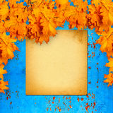 Old paper listing on rusty iron wall. With bright orange autumn leaves Royalty Free Stock Photos