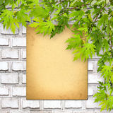 Old paper listing on white brick wall with bright foliage Royalty Free Stock Photo