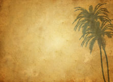 Old paper with ornament. Grungy paper background with palms ornaments Stock Images