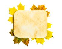 Old paper page on fall leaves Royalty Free Stock Images