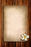 Old paper and plumeria Royalty Free Stock Image