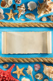 Old paper and seashell on wood Stock Images