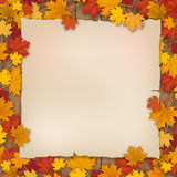 Old paper  sheet in the fallen foliage of a maple tree Royalty Free Stock Image