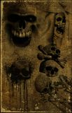 Old paper with skull Stock Images