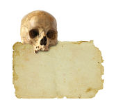 Old paper and skull. Royalty Free Stock Image